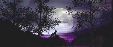 Noche Eterna....
