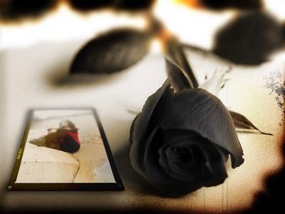 Las cosas del amor.....
