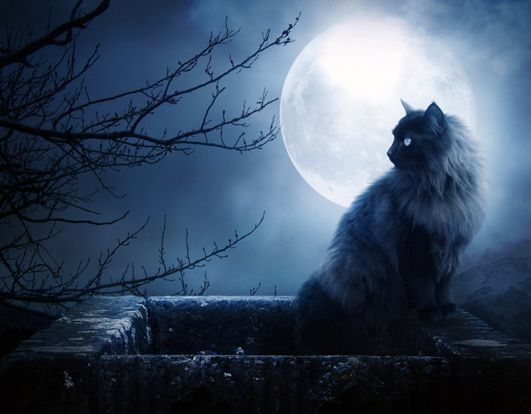Hoy...Mi luna...